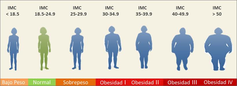 infopac-obesidad